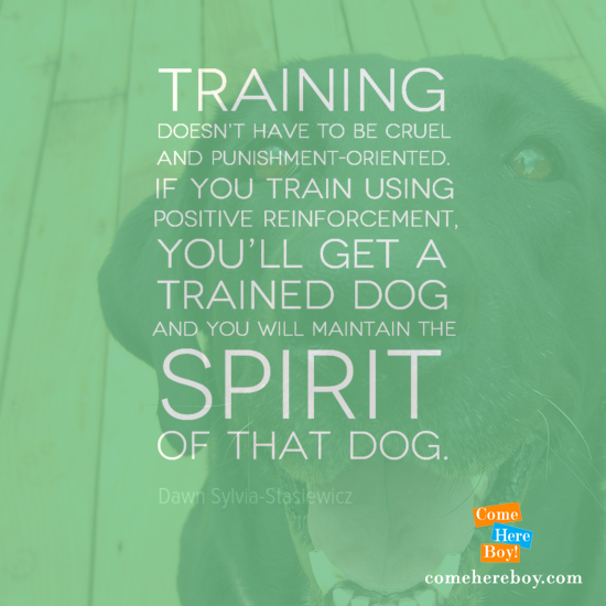 9 Quotes that Inspire Us to Train Dogs Positively – ComeHereBoy!