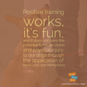Positive training works
